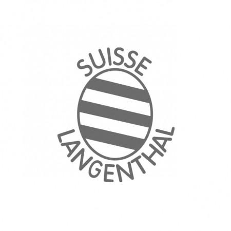 hegematic_logo-langenthal