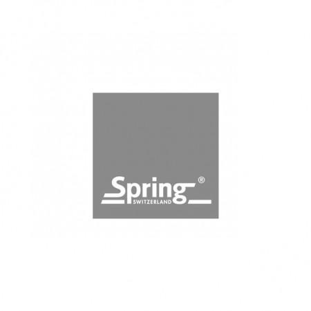 hegematic_logo-spring